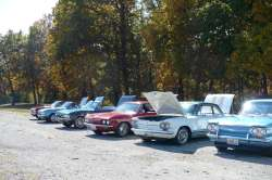 Corvairs in a row